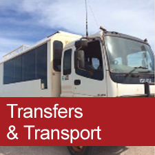 Transfers & Transport