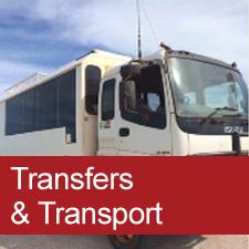 Transfers & Transport