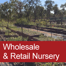 Wholesale and Retail Nursery