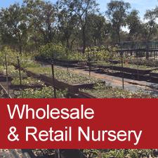 Wholesale and Retail Nursery